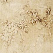 plaster-stencil-grapes-Rochelle-Fitzpatrick-600