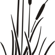 Actual Cattails stencil design