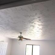 plaster_stenciled_ceiling_700