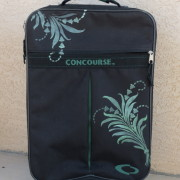 stenciled_suitcase