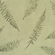 plaster_stencil_fern_leaves_WP