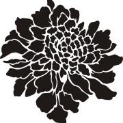 flower_stencil_scabiosa_16