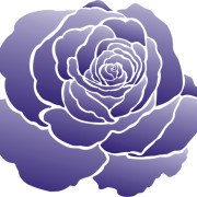 stencil_rose_purplse_7