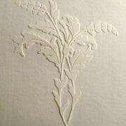 plaster-stencil-la-petite-w-3